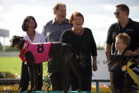 Syndicate Success at Auckland